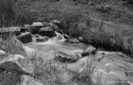 kinder stream